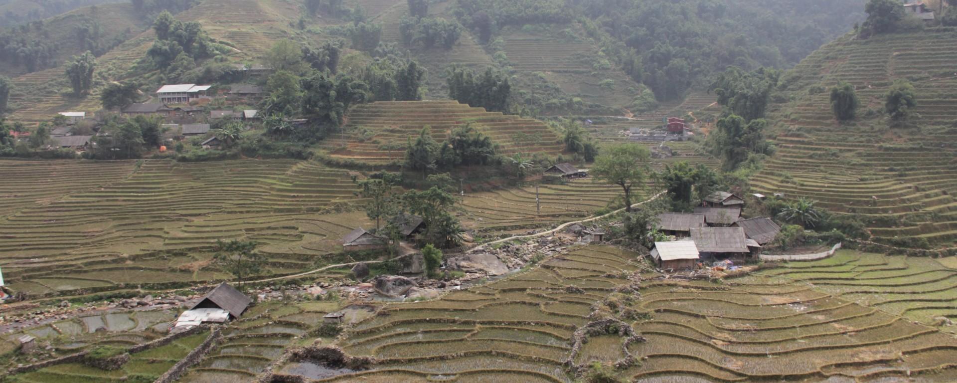 Les rizières coupées dans les montagnes au nord du Vietnam (