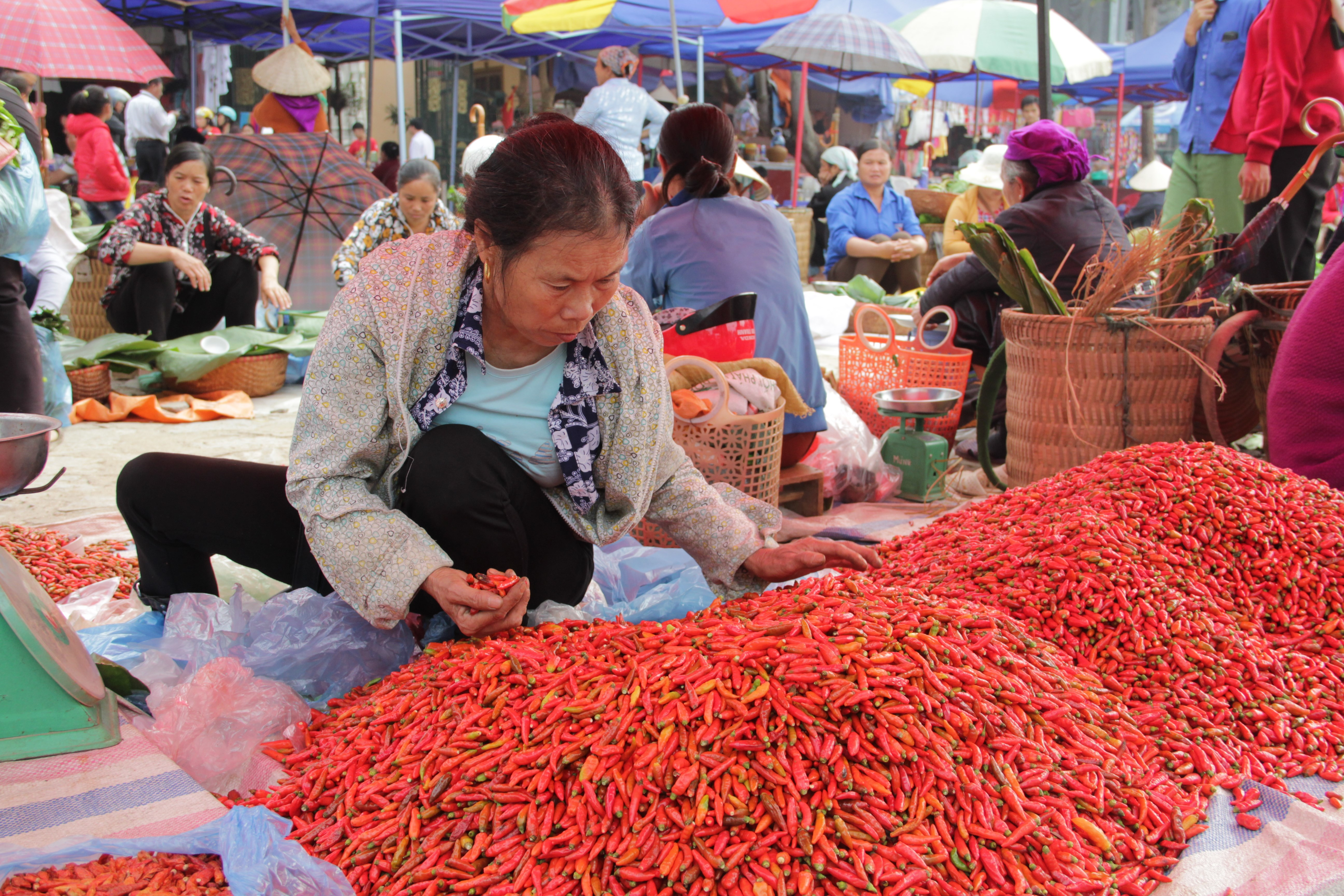 Les Vietnamiens ont l'habitude d'ajouter du piment fort au Phở, la soupe traditionnelle (© Aurélie Bacheley).