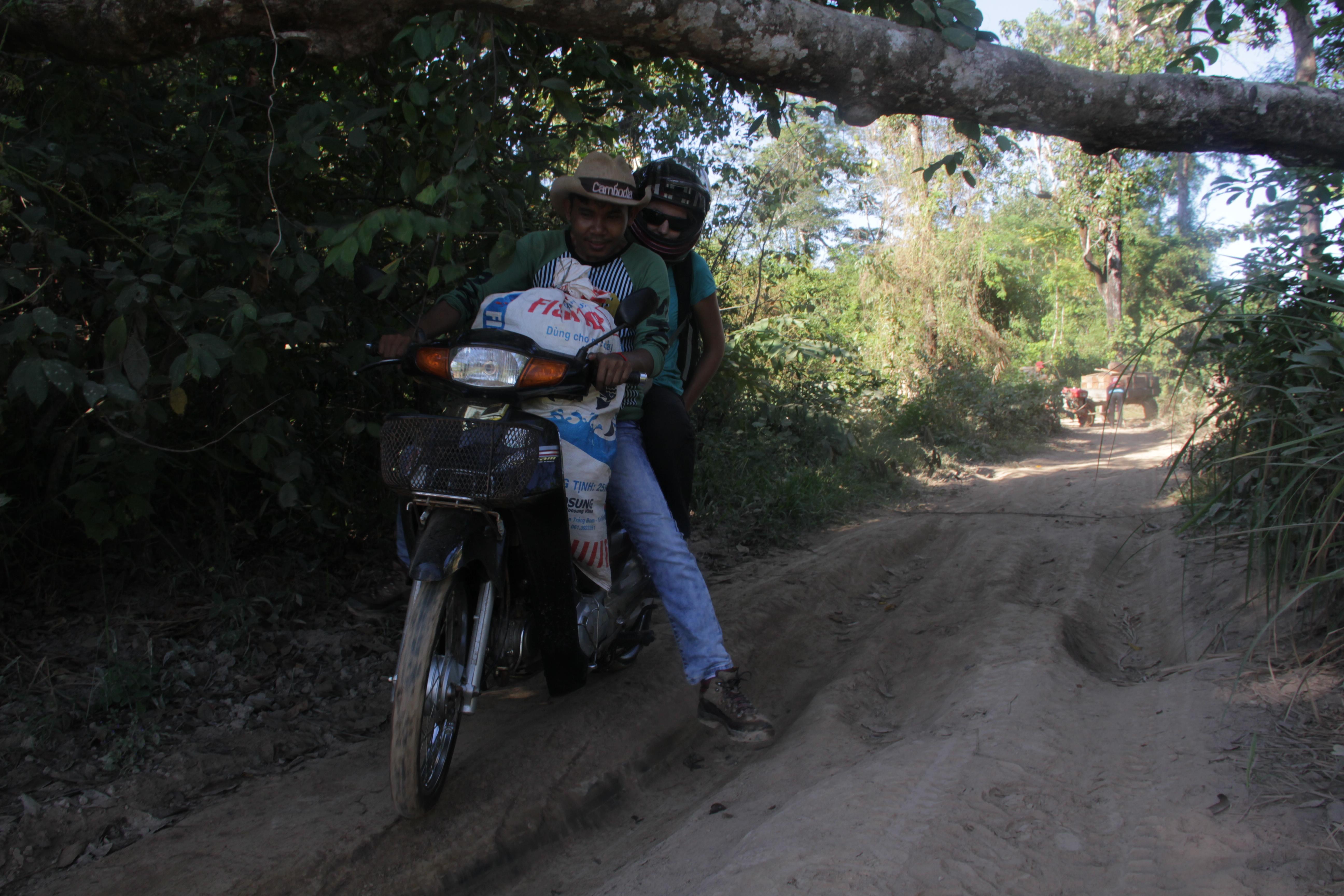 Dans la forêt du Ratanakiri, les pistes sont ravagées par les camions qui transportent le bois (© Jérôme Decoster).