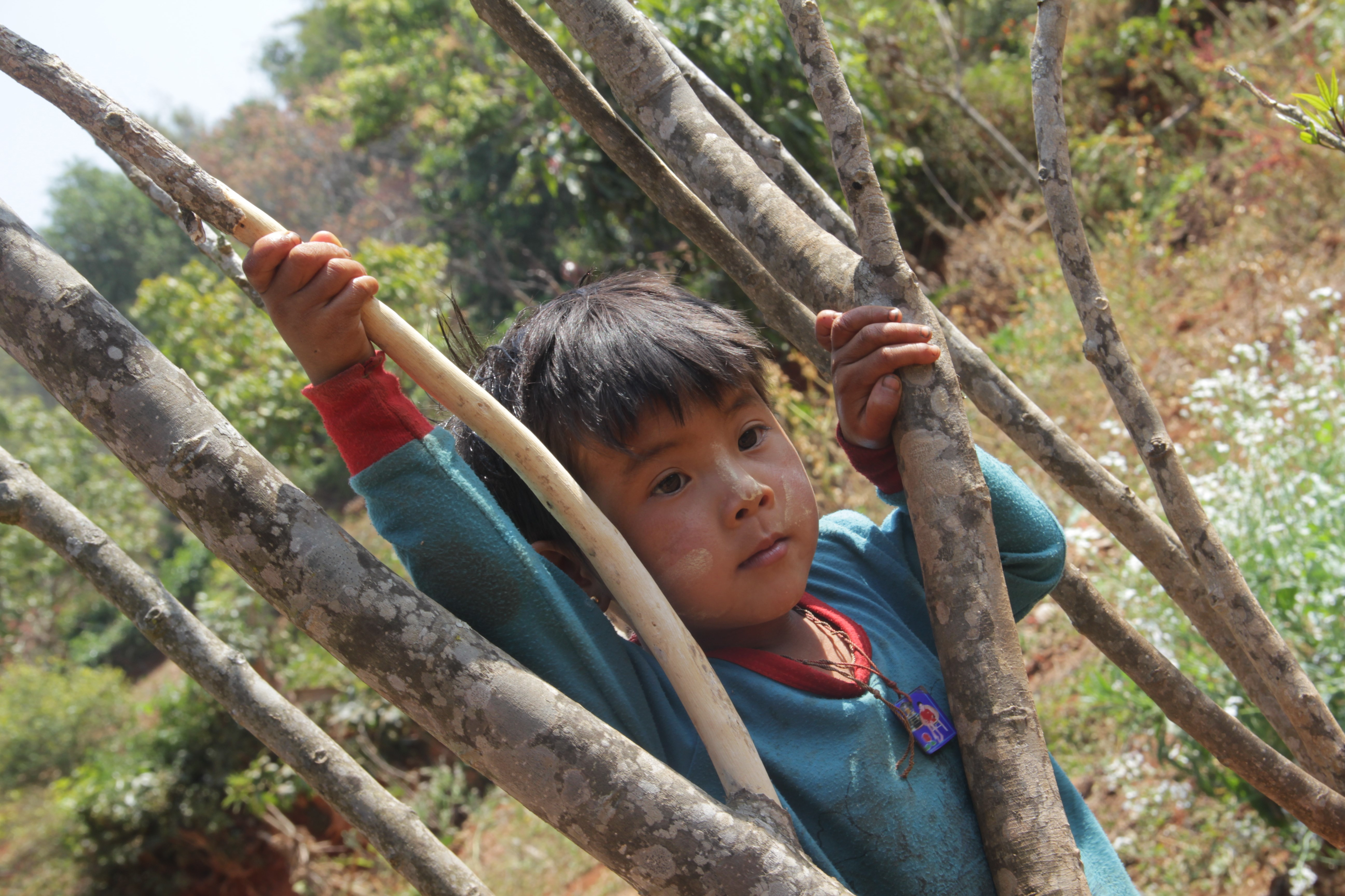 Perché sur un arbre, un enfant regarde passer les touristes dans son village (© Aurélie Bacheley).