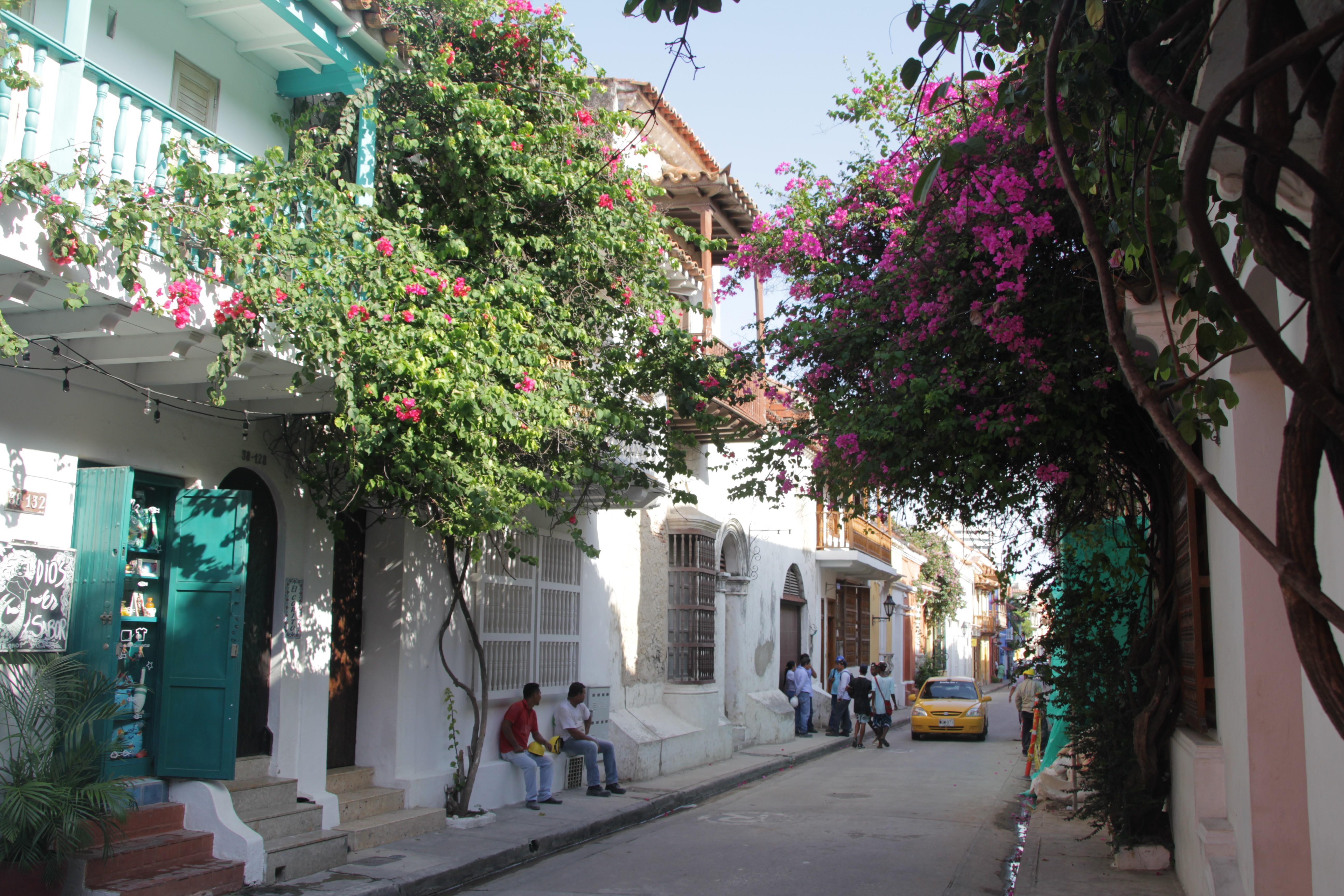 Les plantes et les fleurs envahissent les murs des maisons et offrent de l'ombre aux passants (© Jérôme Decoster).