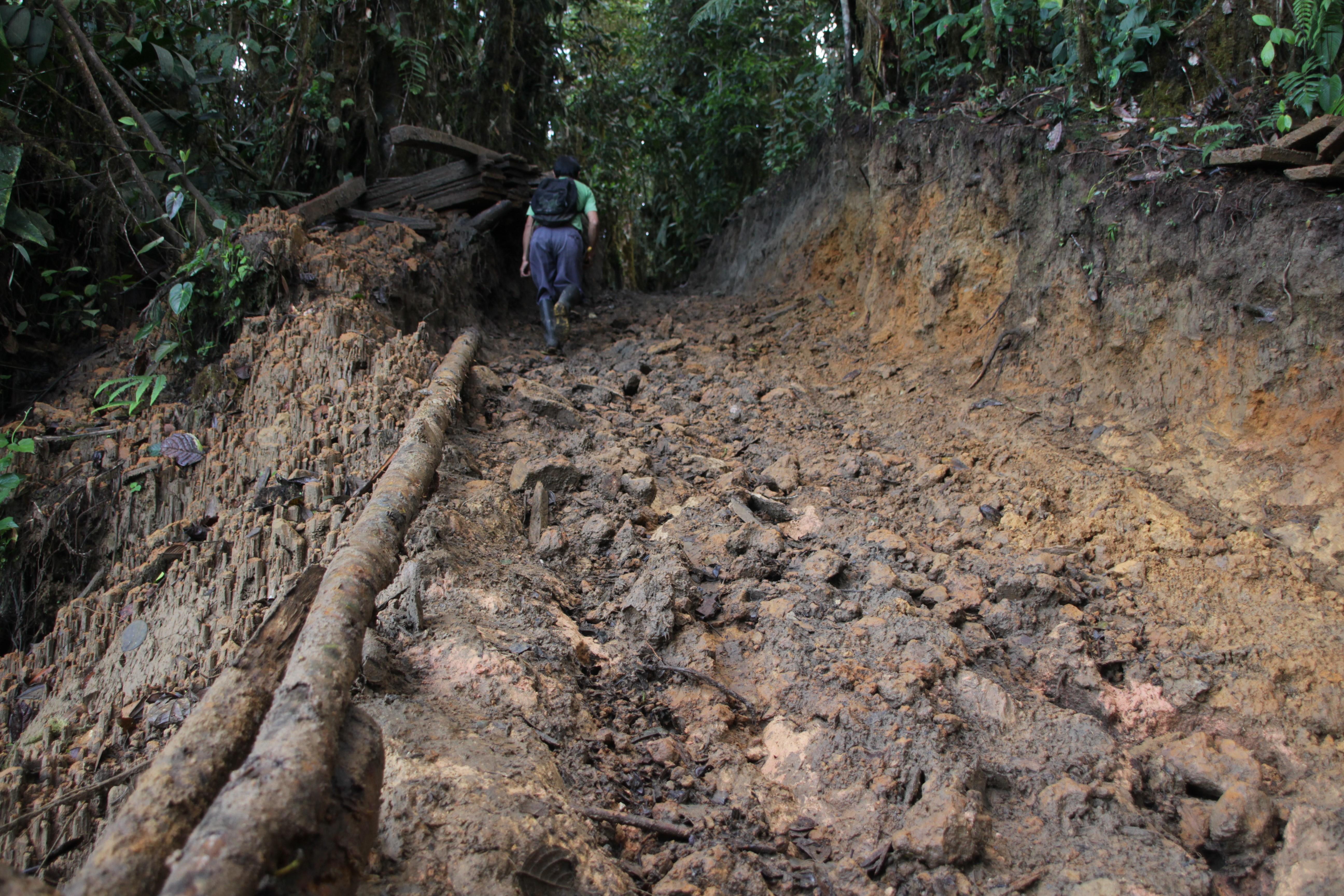 Le chemin raide et boueux mène au campement des ouvriers de la mine de Junín (© Jérôme Decoster).