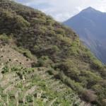 Camper dans des ruines incas, c'est plutót sympa ! (© Jérôme Decoster).